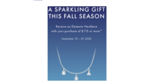 Fall Necklace Gift with Purchase-Element Necklace .