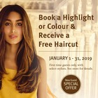 Free Haircut with Colour or Highlight